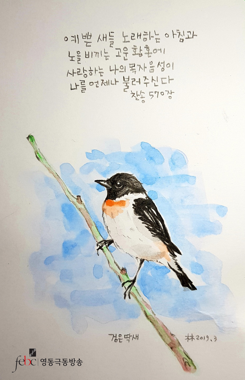 예쁜새들노래하는 아침과.jpg