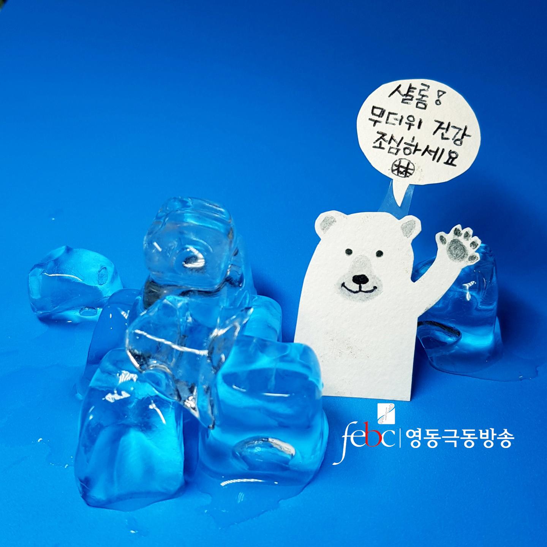 무더위 북극곰.jpg