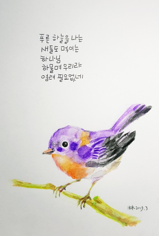 푸른하늘을 나는 새들도 먹이시거늘.jpg