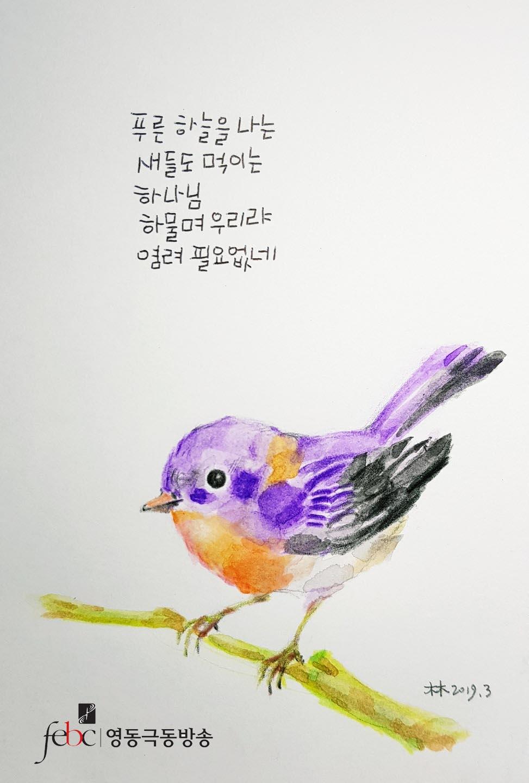 푸른하늘을 나는 새들도 먹이시거늘 복사.jpg